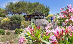 reisinformatie Sardinie, voor de mindfulness & yogareizen